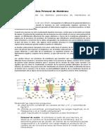 Guía n°5 Segundo medio Biología