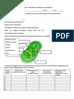Actividad 7 introducción  la fotosíntesis.docx