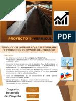 PROYECTO LOMBIRCULTURA 2020 nuevo desing[2289].pptx