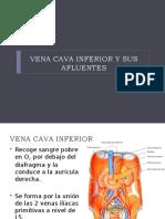 5.-Vena_cava_inferior_y_sus_afluentes