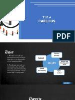CARELIUS.pdf
