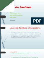 Acción Pauliana