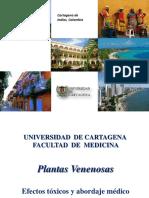 Plantas venenosas II.pdf