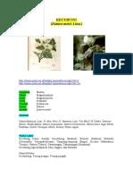 Morfologi Anatomi, Fisiologi Datura Metel