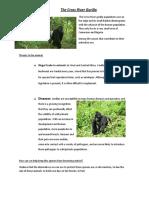 The Cross River Gorilla.docx