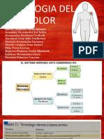 FISIOLOGIA DEL DOLOR, 1TV11.-converted.pdf