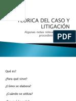 TEORICA DEL CASO Y LITIGACIÓN 19.pdf