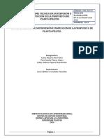 INFORME TECNICO DE SUPERVISIÓN E INSPECCION DE LA PROPUESTA DE PLANTA PILOTO.