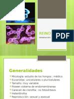 Micología-introducción.pptx