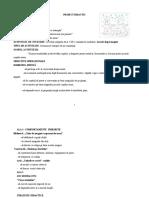 0_proiect_didactic_cunoasterea_mediului_1.doc