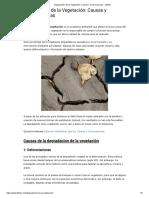 Degradación de la Vegetación_ Causas y Consecuencias - Lifeder
