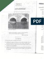 CAP. 6 RESPONSABILIDAD. E.P.