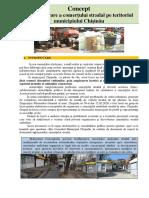 Proiect Concept.pdf