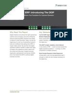 Look Beyond ERP _ Introducing The DOP