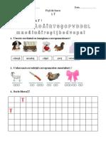 sunetul si litera Ț.pdf