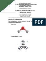 Segundo Informe Química Organica 2.pdf