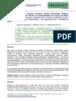 Correlações Entre o Volume Cerebral, Córtex Pré-frontal, Tálamo, Hipocampo e Ponte de Varólio, e a Agressividade Em Touros de Raça Brava de Lide