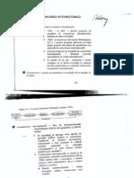 26283221 Comunicare International a Vasile Puscas