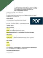 Actividad 2 TEO.docx