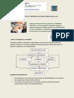 DOCUMENTO 2-PAUTAS Y CRITERIOS PARA ORGANIZAR CONTENIDO (1)