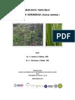 GAP-Karumenga.pdf