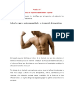 Practica 01 (1).docx