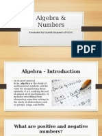 Algebra & Numbers (math project ppt)