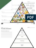 piramida alimentelor.pdf