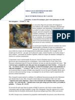 Le Poisson - Une Source Nutritionnelle de Valeur