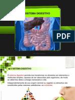 07-sistemadigestivo-130429071440-phpapp02