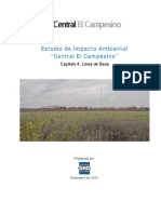 Capitulo_04_Linea_de_Base.pdf