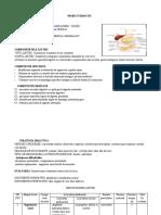 proiect_inspectie_digestia_intestinala