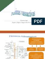 aminas 3.pdf