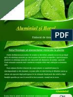Aluminiu si bor la plante fiz plantelor