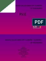 informacion.P.V.E