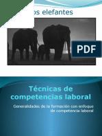 Los elefantes.pptx