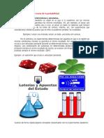 Apuntes dominical.pdf
