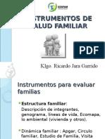 instrumentos-de-salud-familiar-2010.ppt
