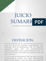 RESUMEN JUICIO SUMARIO