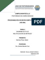 Tarea6. Diagrama Matriz . Belem Sánchez Pérez