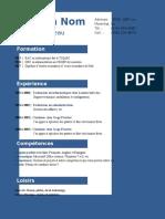 exemple_de_cv_65.doc