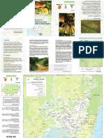 mapeamento-comunitario-dos-impactos da soja