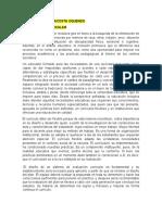 ENSAYO FLEXIBILIDAD CURRICULAR PRACTICA PEDAGOGICA
