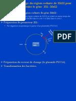 Présentation2.pdf