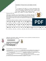 guia integrada.docx