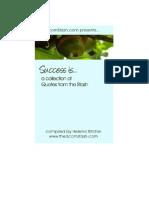 Success Quotes 09