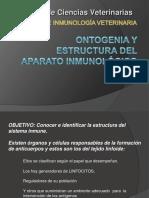 03 Estructura y ontogenia SI