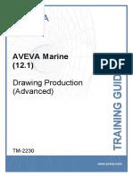 TM-2230 AVEVA Marine (12.1) Drawing P