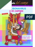 El Coronavirus y el Campo