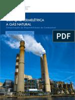 53_53_relatorio-geracao-termeletrica-a-gas-natural-2017_0.pdf